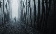 walking on path in strange dark forest with fog